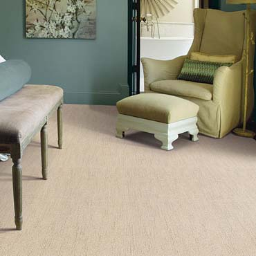 Caress Carpet by Shaw | Pleasanton, CA