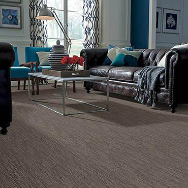 Anso® Nylon Carpet in Pleasanton, CA