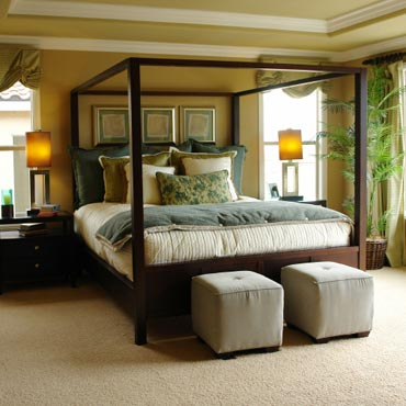 STAINMASTER® Carpet in Pleasanton, CA